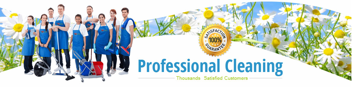 VIP cleaning London - professional cleaning services