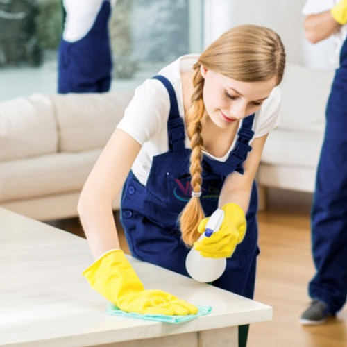 Flat & House Cleaning